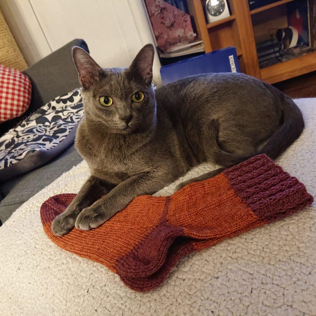 Ares und die Socken